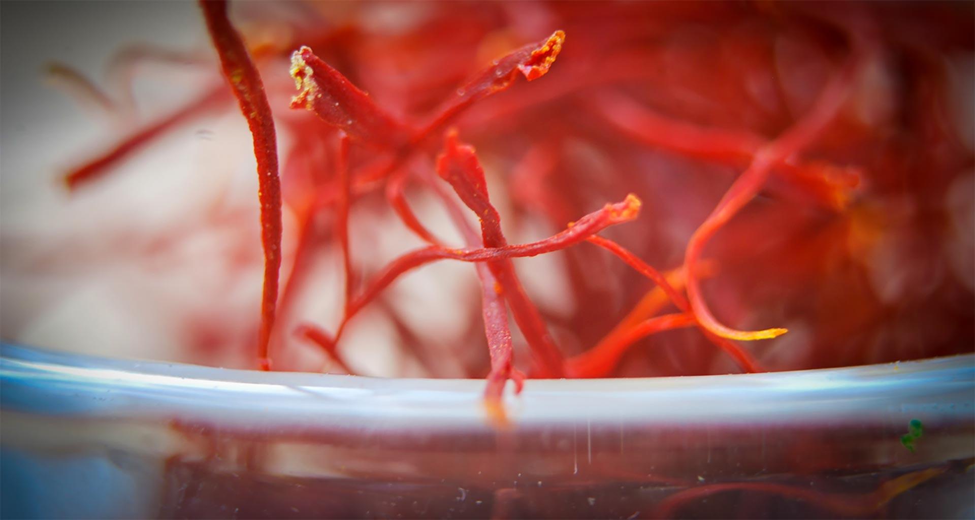 Close up of saffron on a plate